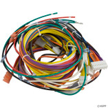 Pentair | Max-E-Therm® Heater Electrical System | Heater Wiring Harness -115/230V | 42001-0104S