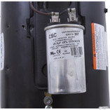 A.O. Smith Electrical Products | Motor, Century, 0.5hp, 115v, 2-spd, 56C fr, C-Face Key | B970