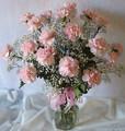 18 Carnation Bouquet