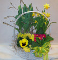 Medium Blooming Basket