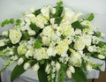 Elegant White Casket Spray