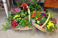 Ultimate Blooming Basket