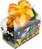 Zuii Bud Glamour Gift Box