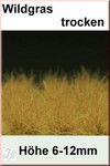 Fredericus Rex Dry EXTRA LONG Wild Grass Tufts