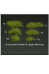 Fredericus Rex Light Green Mixed Sizes of Grass Tufts