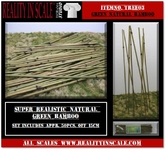 Reality in Scale Bamboo