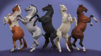 Andrea Miniatures: Series General - Rearing Horse