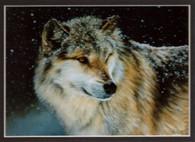 ART-EA-00002  American Wolf Print