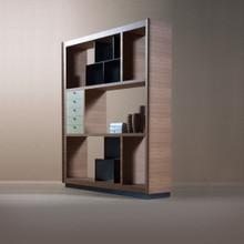 Luxury Contemporary Bookcase