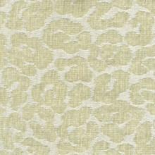 Jane Ivory Fabric