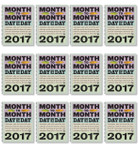 Month to Month, Day by Day, 2017 (Case)