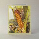 Corn Note Cards