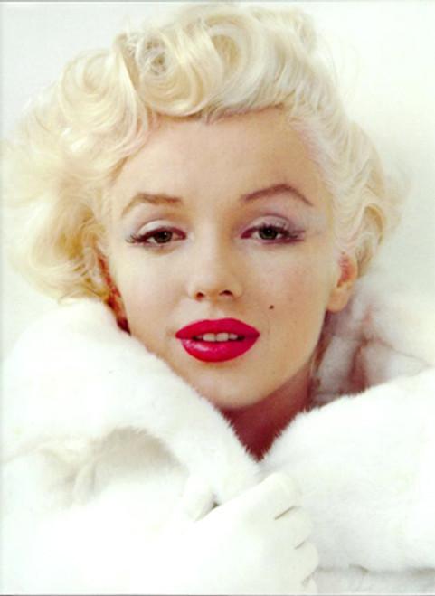 Marilyn Monroe Last Will & Testament, Color PDF Download