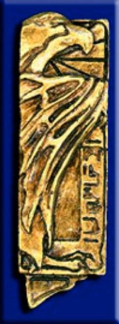 Star Trek DS9 Romulan Tal Shiar Collar Emblem