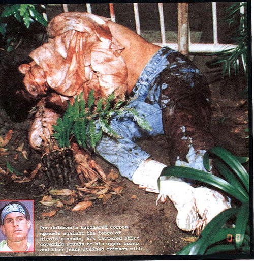 Ron Goldman Autopsy, Nicole Brown Simpson & OJ Simpson Case, PDF Download