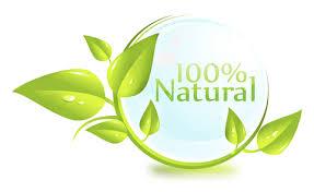 leaf-100-.jpg