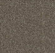 Forbo Tessera Teviot Carpet Tiles 367 olive