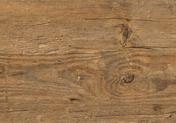 Polyflor Camaro Wood PUR Wild Amber Oak 2249