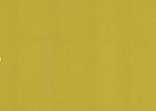 Polyflor Silentflor PUR Meadow 9980