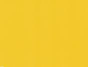 Polyflor Silentflor PUR Flaxen 9979