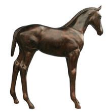 Colt Standing Garden Equine Sculpture