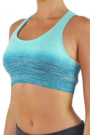 Ombre Fusion Workout Bra