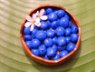 Blue Painted Loose Kukui Nuts