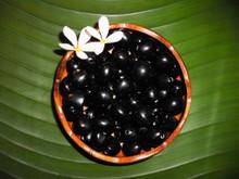 Natural Black Loose Kukui Nuts