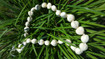 Nature's Natural White kukui nut lei - 1 per order