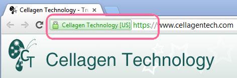 website-security.jpg