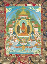 Amitabha (Image 1) Deity Card