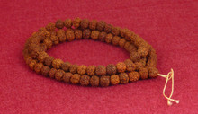 8mm Rudraksha Mala on Simple String