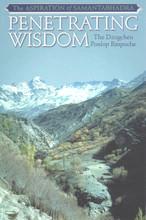 Penetrating Wisdom