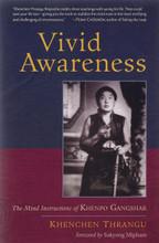 Vivid Awareness