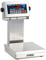 Doran 2200CW Checkweighing Scale