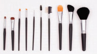 Crown Brush: 10 Piece Studio Brush Set