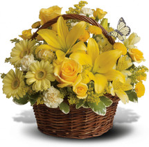 Wishes do come true, by the basketful, actually. This delightful arrangement is so full of sunny blossoms, it even includes a pretty yellow butterfly who obviously feels right at home, basking in the warmth.
