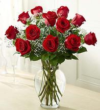 A Dozen Red Rose Bouquet