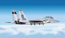 F-15 Eagle US Air Force 50th Anniversary Tiger Meet