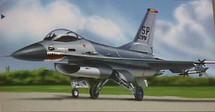 """F-16 Falcon USAF """"Wild Weasel"""""""