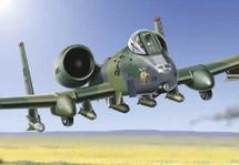 A-10 Warthog Holy *~..+!