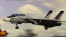 """F-14A Tomcat US Navy """"Pukin Dogs"""""""