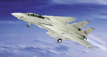 "F-14 Tomcat US Navy ""Black Lions"""