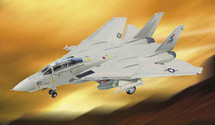"F-14 Tomcat US Navy VFA-41 ""Black Aces"""