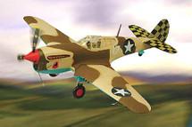 """P-40L Warhawk US Army Air Force """"Sawtooth Apache"""""""