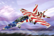 "F/A-18 Hornet US Navy ""Stars and Stripes"""