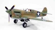 "P-40E Warhawk Col. John Landers' ""Texas Longhorn"""
