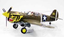 "P-40 Warhawk USAAF ""Aleutian Tigers"""