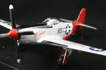 "P-51D Mustang Exxon ""Tiger Spirit"""