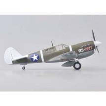 "P-40M Warhawk ""Princess Pat II"", Robert Westbrook"